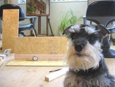 2009 3 4 7s 木工職人 日曜大工の道具もたくさんある