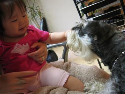 2009 7 15 3s 赤ちゃんのおやつ・・・