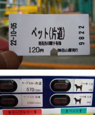 2010 10 8 1s 御岳山下山 2010