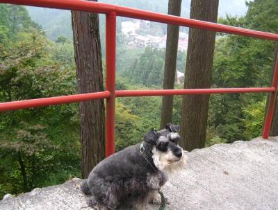 2010 10 8 2s 御岳山下山 2010