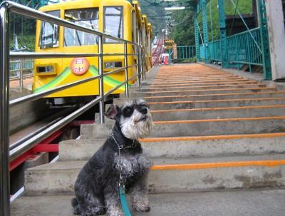 2010 10 8 4s 御岳山下山 2010