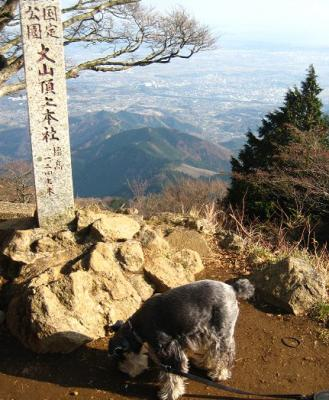 2010 12 2 6s 丹沢大山国定公園の大山に登った 2