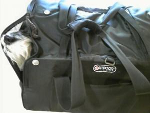 2011 11 8 2 300x227 5代目バッグはOUTDOOR