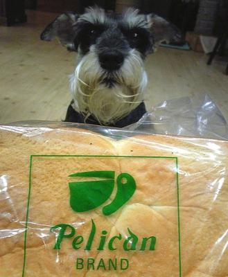 2011 7 23 1s 浅草の食パン