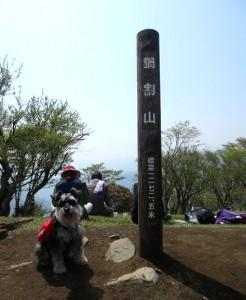 2013 5 15 11 246x300 今年初の登山!!!