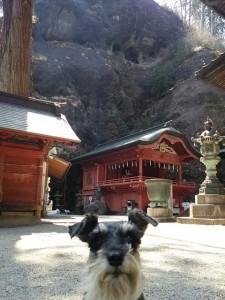 2014 5 28 3 225x300 榛名神社へ行ってきた。