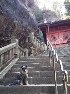 2014 5 28 4 225x300 榛名神社へ行ってきた。