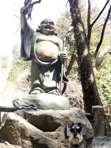 2014 5 28 5 225x300 榛名神社へ行ってきた。