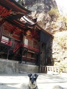 2014 5 28 6 225x300 榛名神社へ行ってきた。