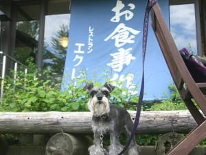 2014 8 26 2 300x225 キャンプの帰りは草津温泉へ。