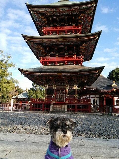 2015 12 22 2 成田山に行ってきた
